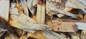 Woodbarks-Playchips